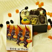 Trick or Treat Black Cats