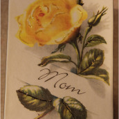 Mom Yellow Rose